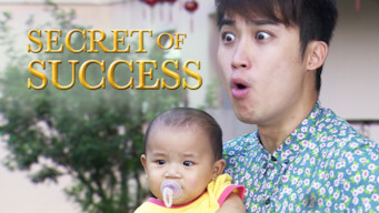 Secret of Success: Season 1